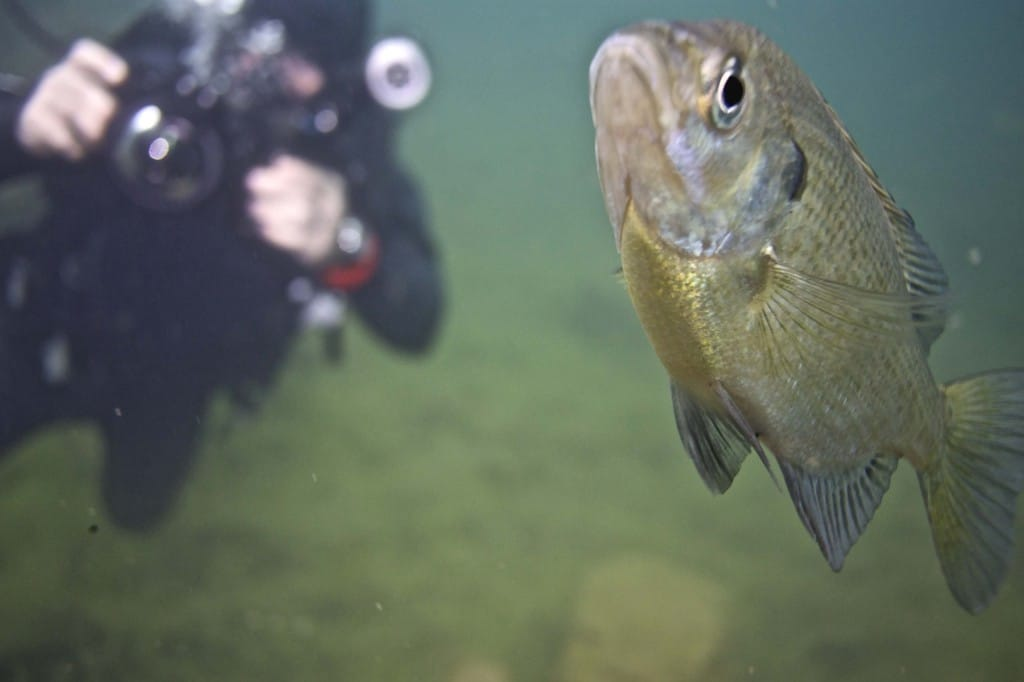 Northern MN Scuba Diving Trip