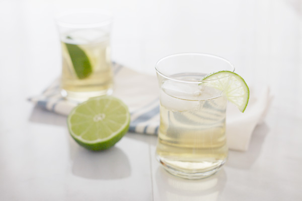 Gin and Tonic | BourbonandHoney.com