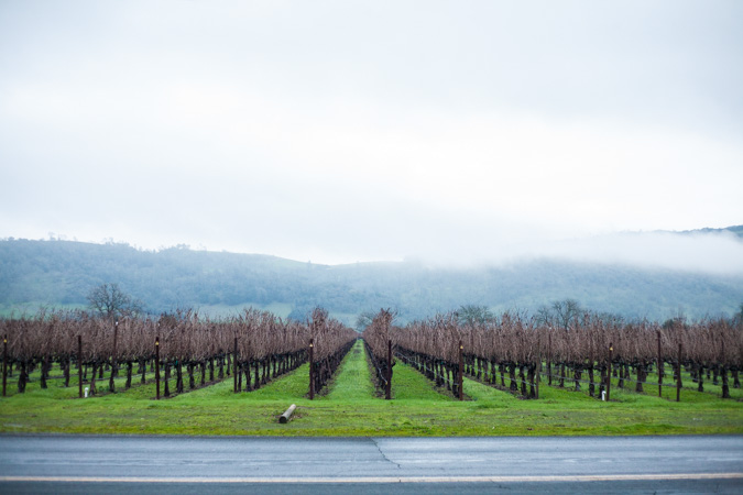 Adventure: Weekend in Napa Valley | BourbonandHoney.com