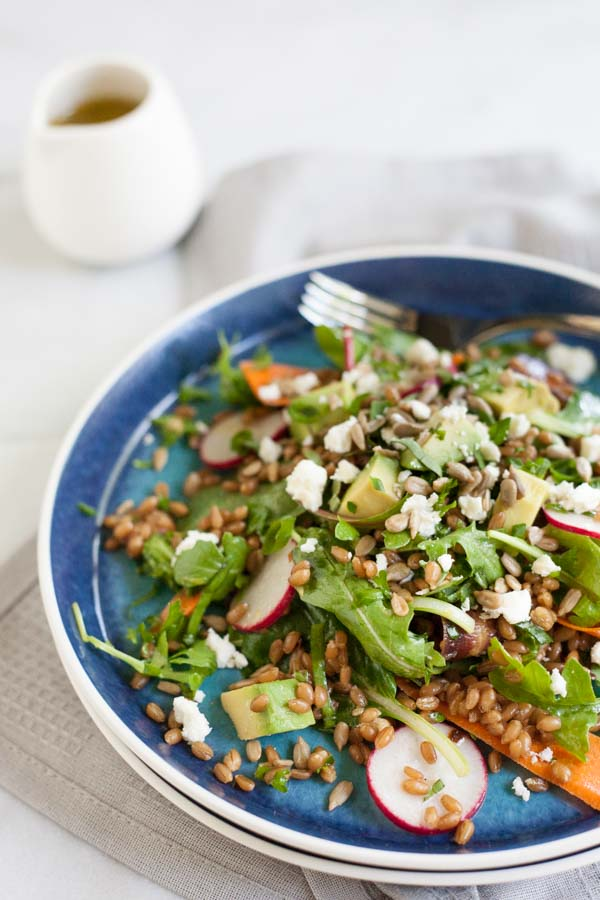 Carrot, Radish and Wheat Berry Salad with Lemon Vinaigrette | BourbonandHoney.com -- Fresh, citrusy and packed with veggies, this Wheat Berry Salad with Lemon Vinaigrette is the perfect light and filling summer salad.