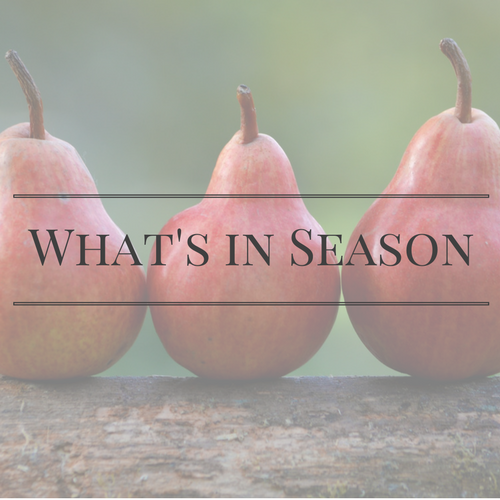 What's in Season | BourbonandHoney.com