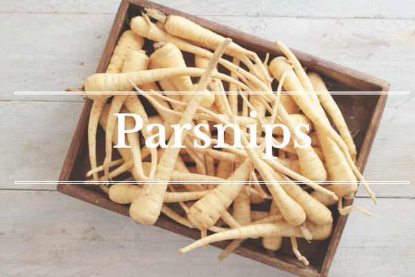 What's in Season: January - Parsnips | BourbonandHoney.com