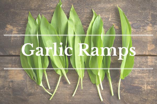 What's in Season: Garlic Ramps | BourbonandHoney.com