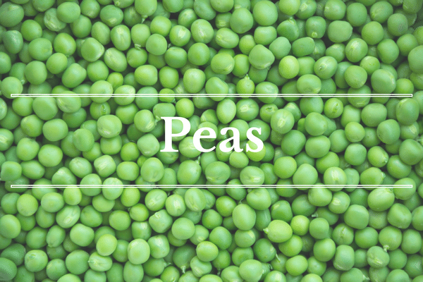 What's in Season: Peas | BourbonandHoney.com