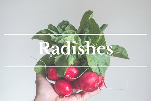 What's in Season: Radishes | BourbonandHoney.com