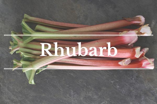 What's in Season: Rhubarb | BourbonandHoney.com