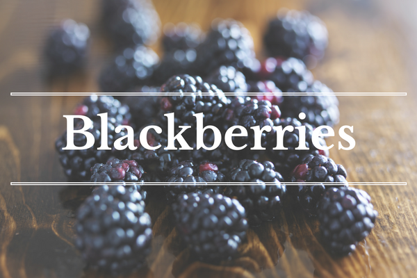 What's in Season: Blackberries | BourbonandHoney.com -- From mangos and cucumbers to blackberries and swiss chard this 'What's in Season' feature is a collection of the best fruits, veggies and recipes for the month of June.