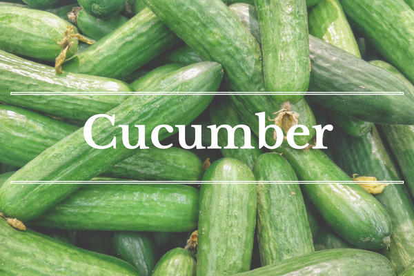 What's in Season: Cucumber | BourbonandHoney.com -- From mangos and cucumbers to blackberries and swiss chard this 'What's in Season' feature is a collection of the best fruits, veggies and recipes for the month of June.