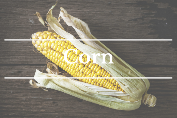 What's in Season: Sweet Corn | BourbonandHoney.com -- From corn and eggplant to green beans and peaches this 'What's in Season' feature is a collection of the best fruits, veggies and recipes for the month of July.