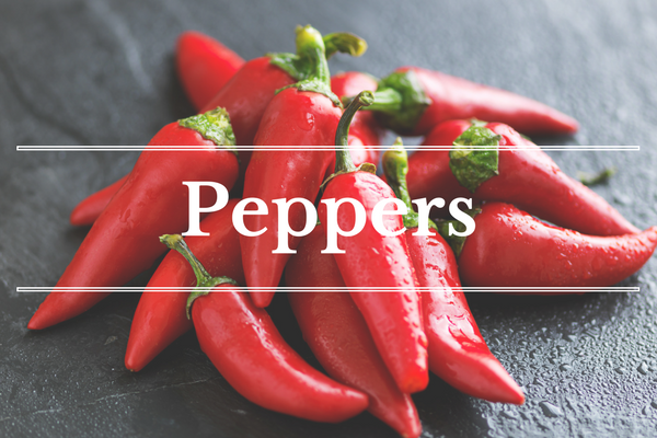 What's in Season: Peppers | BourbonandHoney.com